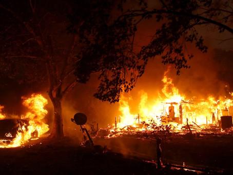 Губернатор Калифорнии объявил чрезвычайное положение в штате из-за пожаров