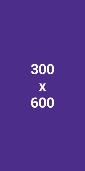 Half Page (300x600)