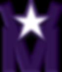 VM Logo_3D Color.png
