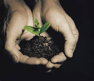 "The ""Blueprint"" To Spiritual Maturity (Article 17-11)"