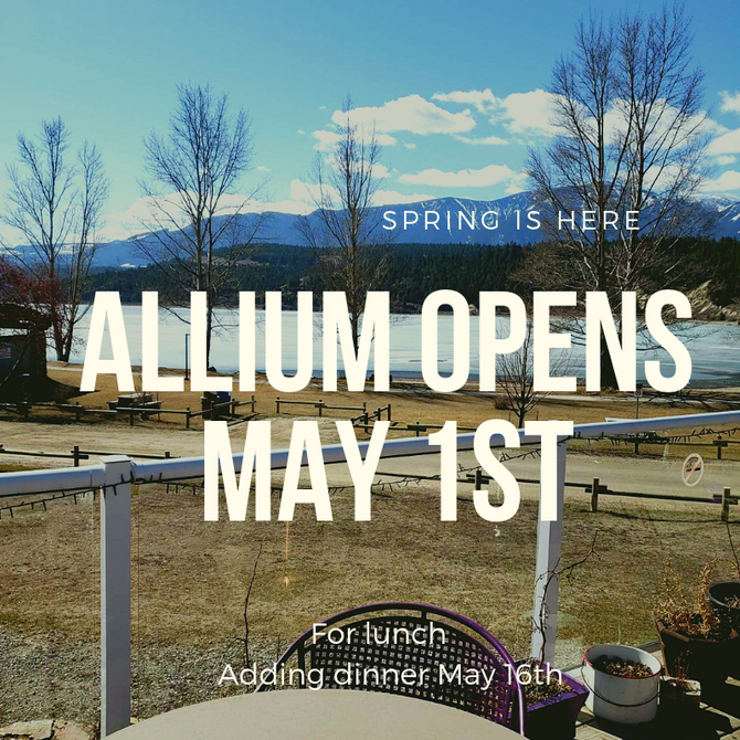Allium's Opening soon