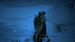 Reflection in the Rain