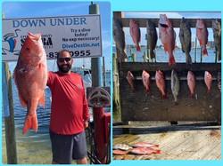Destin Spearfishing