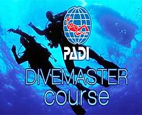PADI-Divemaster-Course.png