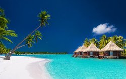 Beach villas on a tropical island with p