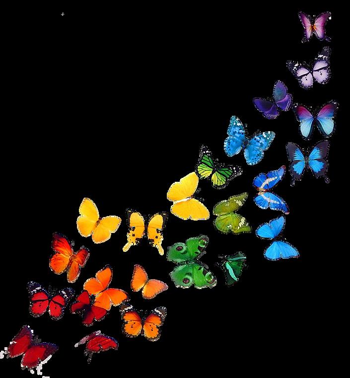 rainbowbutter1.png
