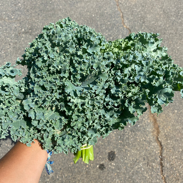 Our Own Kale