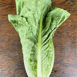 Romaine Lettuce - Single Head