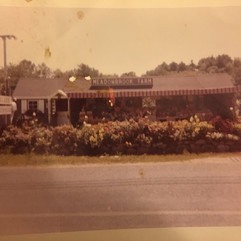 Early years at Meadowbrook