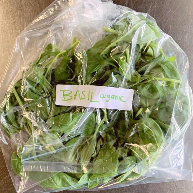 Organic Basil - Our Own!