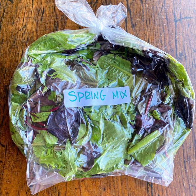 Spring Mix