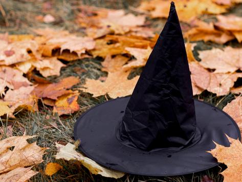 6 conteúdos sobre o universo bruxo livres de transfobia
