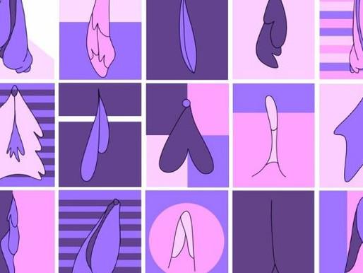 Labioplastia e o mito da vulva vulgar