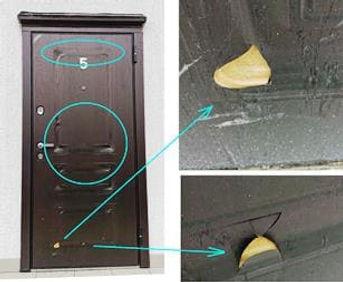 дверь-1а (1).jpg