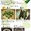 Thumbnail: 房州そらまめ2kg(送料込)