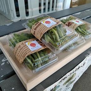 菜花の販売