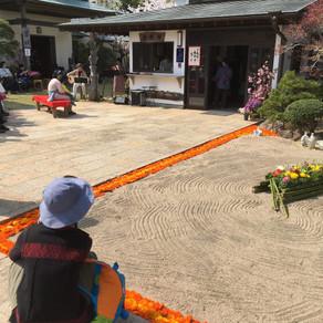 能蔵院の花祭り