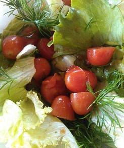 ミニトマトの初収穫