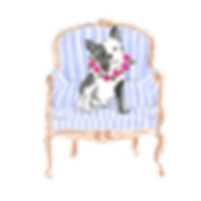 Black-White-Frenchie-Blue-Chair.png