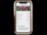 iphone-xs-mockup-22485 (16).png