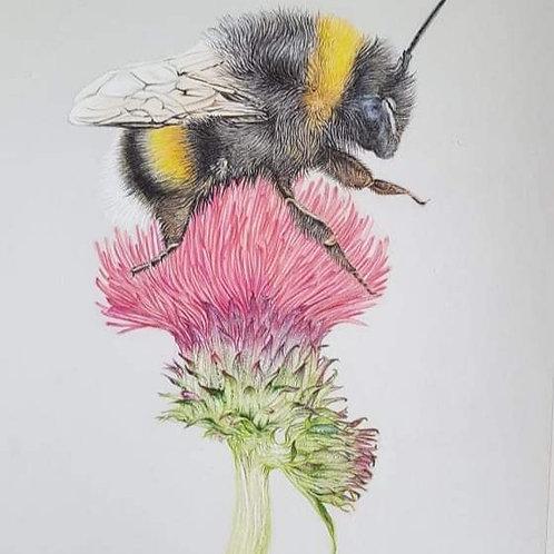 Mrs Bee giclee print