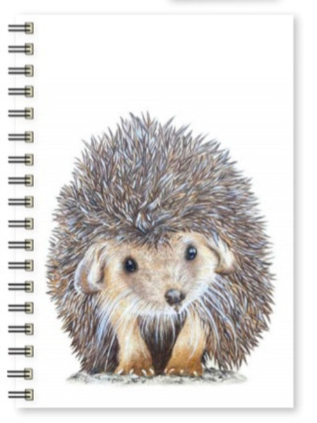 A5 Conker Notepad