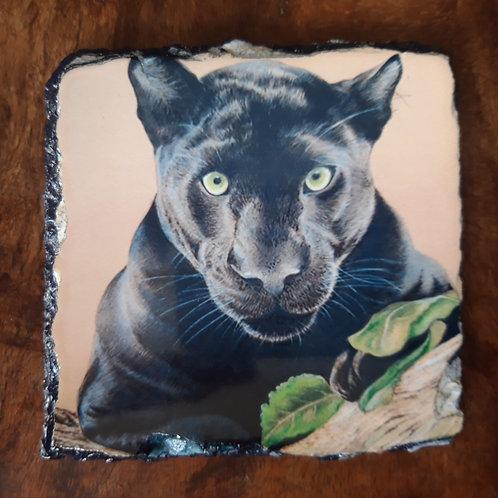 Panther slate coaster