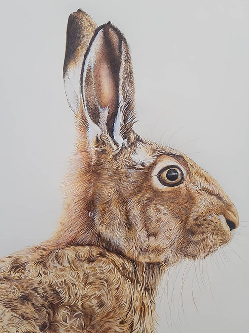 """""""Lookout""""  Hare Giclee print"""