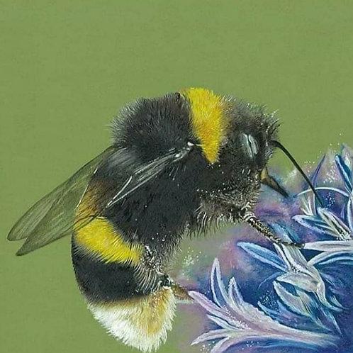 Mr Bee workshop 19th September or 10th October
