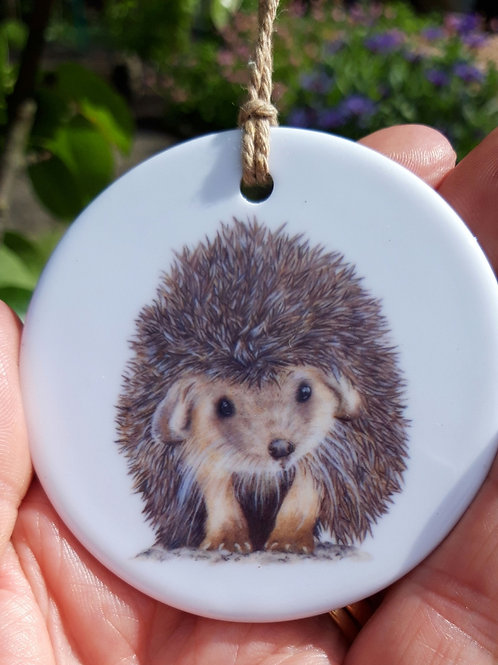 Conker the Hedghog ceramic decoration