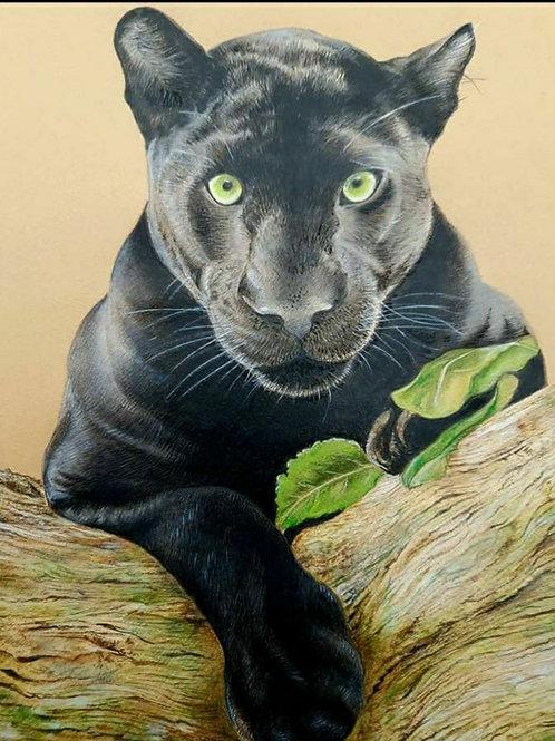 """ Black panther "" Giclee print"