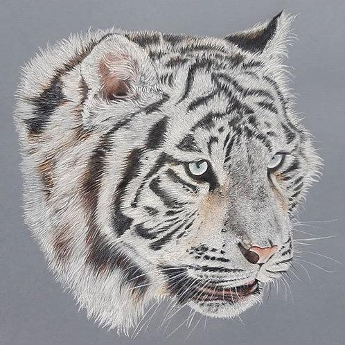 Tibetan White Tiger print