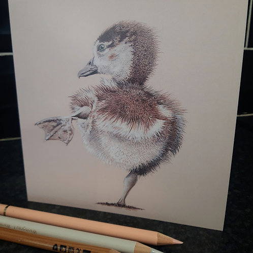 ' Duckling ' Greeting card