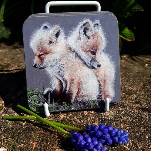 Baby Fox's coaster