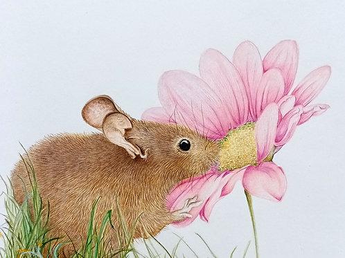 Little mouse print