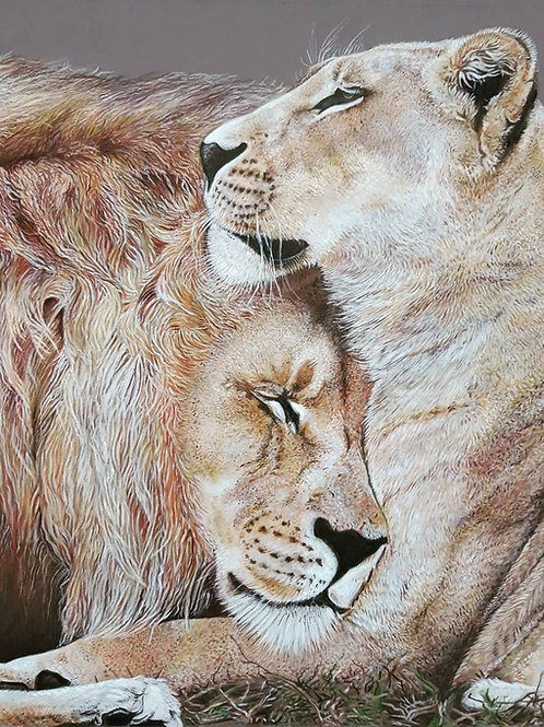 """"""" Lions in Love """" giclee print"""