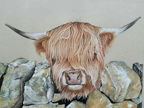 """""""Pre order"""" Hamish giclee signed print"""