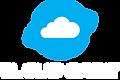 Cloud Orbit_w.png