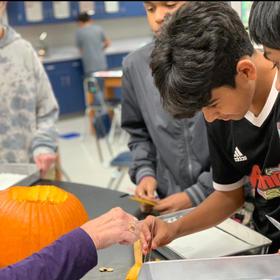 Pumpkin Cells Lab