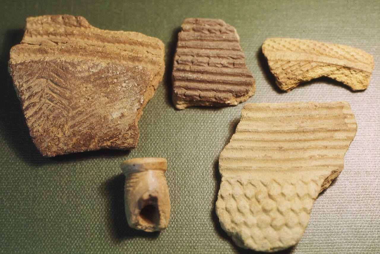 Prehistoric Pottery Shards