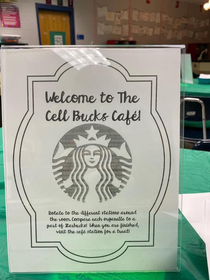 Cell Bucks Activity