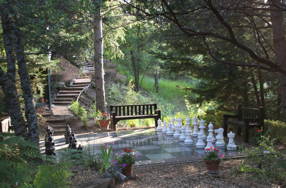 09-Chess-Board-in-Nature-Park.jpg