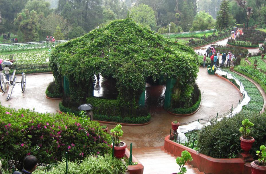 ooty-botanical-garden-ui-2.jpg