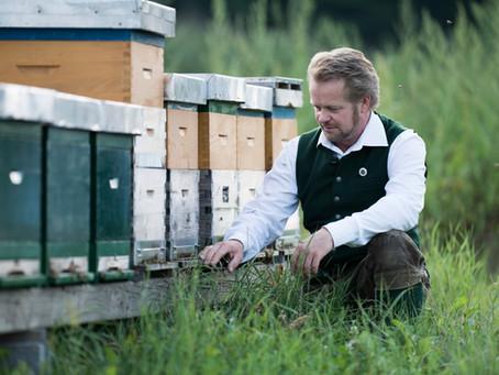 Vorbestellung Bienenvermietung 2020