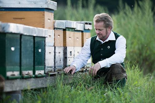 bees sponsorship