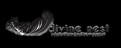 Divine Nest Horizontal Black Logo - Hori