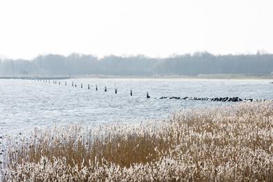 Gooimeerdijk nabij Blanchardpad