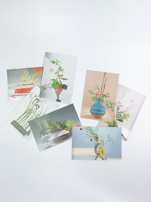 Black Rabbit Artist Post Cards