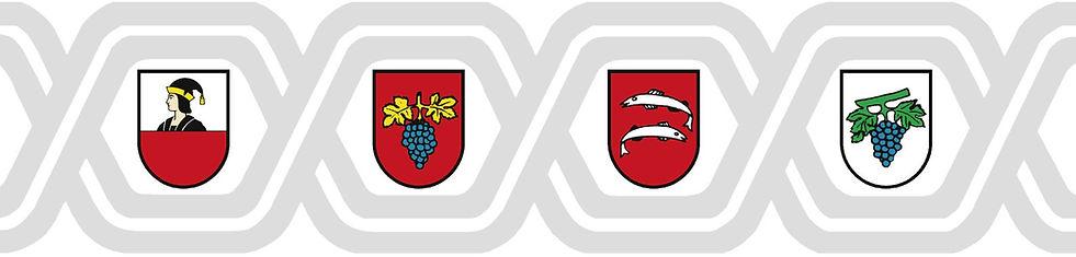 Logo_GVN_als_jpg.jpg