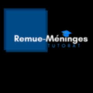 Copy_of_Remue-Méninges.jpg
